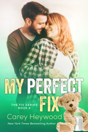 My Perfect Fix book