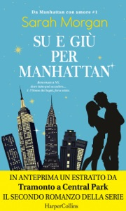 Su e giù per Manhattan Book Cover
