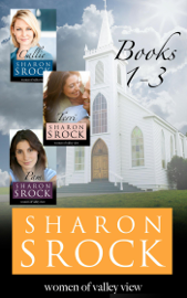 The Women of Valley View Collection, books 1-3 book