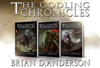 Brian D. Anderson - The Godling Chronicles Bundle 1-3  artwork