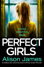 Perfect Girls PDF Download