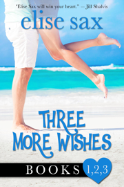 Three More Wishes book summary
