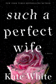 Such a Perfect Wife book