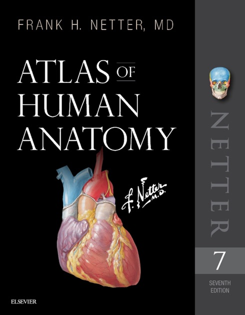 Atlas Of Human Anatomy E Book By Frank H Netter Md On Ibooks