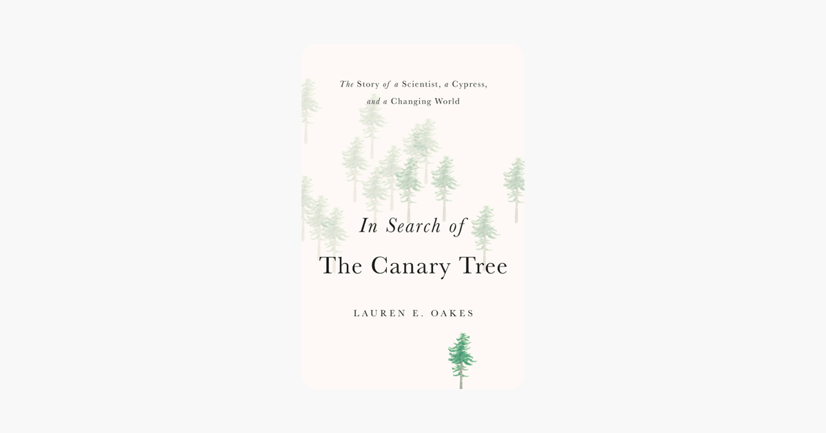 In Search of the Canary Tree - Lauren E. Oakes