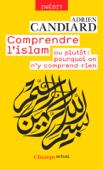 Comprendre l'islam. ou plutôt : pourquoi on n'y comprend rien