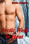 Arctic Wolf In Heat