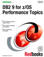 DB2 9 for z/OS Performance Topics