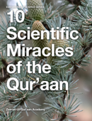 10 Scientific Miracles of the Qur'aan