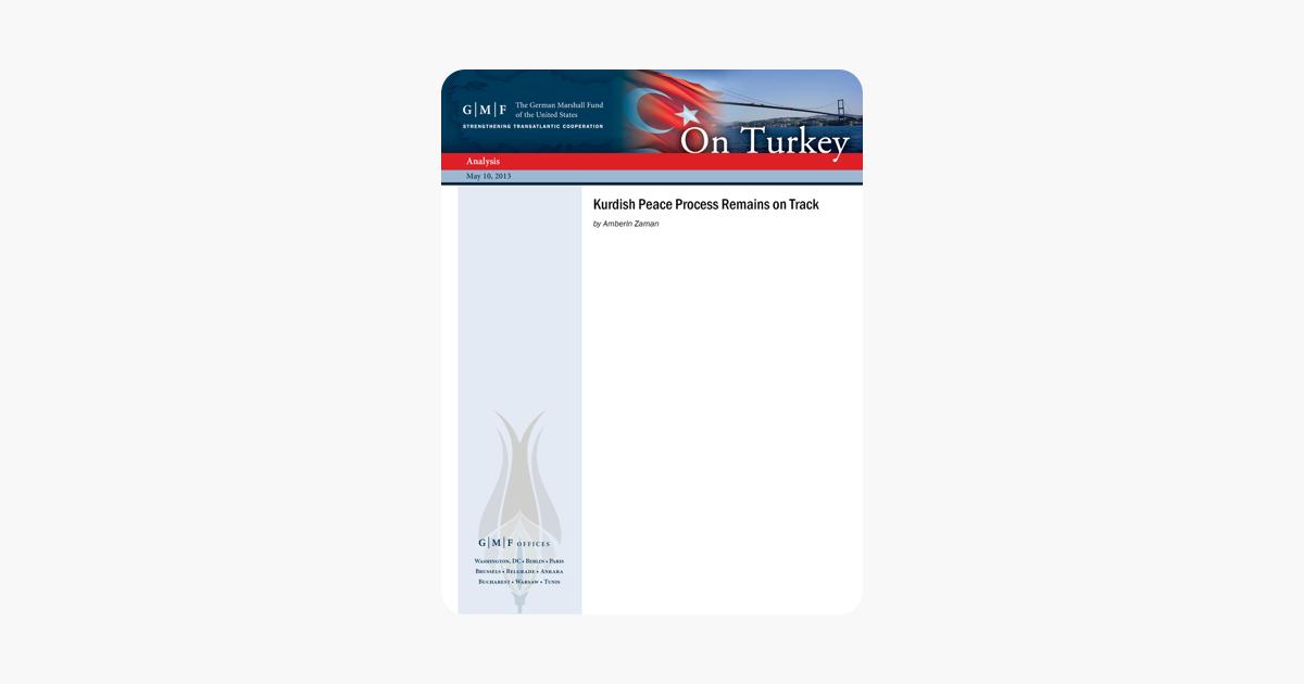 Ethnic-Turkish voters