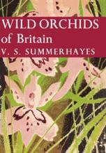 Wild Orchids Of Britain