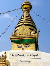 A {PHOOL} IN NEPAL