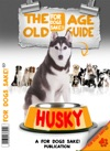 The Husky Old Age Guide 7
