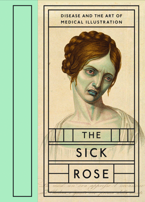 The Sick Rose - Richard Barnett book