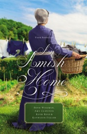 An Amish Home PDF Download