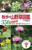 この花なに?がひと目でわかる! 散歩の山野草図鑑 Book Cover