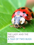 The Lady and the Aphid: A Tale of Two Bugs