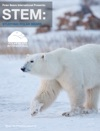 STEM Studying Polar Bears