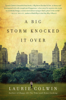 Laurie Colwin - A Big Storm Knocked It Over artwork