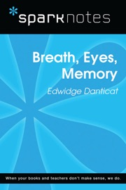 BREATH, EYES, MEMORY (SPARKNOTES LITERATURE GUIDE)