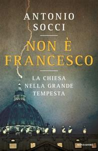 Non è Francesco Book Cover