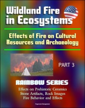 Wildland Fire in Ecosystems: Effects of Fire on Cultural Resources and Archaeology (Rainbow Series) Part 3 - Effects on Prehistoric Ceramics, Stone Artifacts, Rock Images, Fire Behavior and Effects