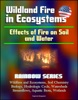 Wildland Fire In Ecosystems: Effects Of Fire On Soil And Water (Rainbow Series) - Wildfires And Ecosystems, Soil Chemistry, Biology, Hydrologic Cycle, Watersheds, Streamflows, Aquatic Biota, Wetlands