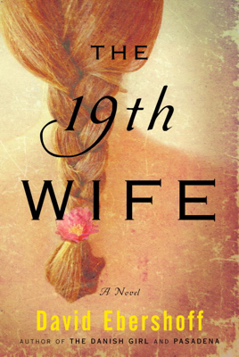 The 19th Wife - David Ebershoff book