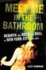 Lizzy Goodman - Meet Me in the Bathroom artwork