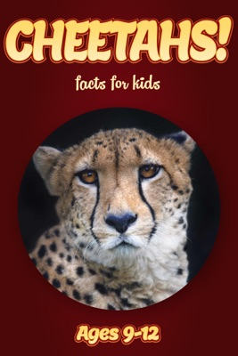Cheetah Facts For Kids 9-12