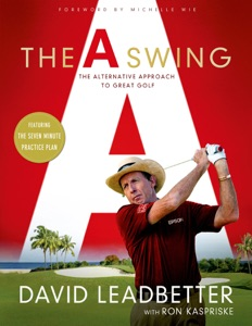The A Swing Book Cover