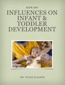 Influences on Infant and Toddler Development