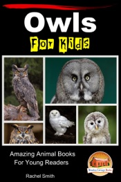 Owls For Kids: Amazing Animal Books For Young Readers