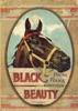 Black Beauty (Illustrated)