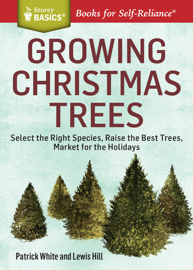 Growing Christmas Trees