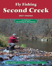 Fly Fishing the Second Creek, West Virginia