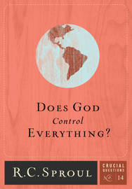 Does God Control Everything? book