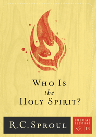 Who Is the Holy Spirit? book
