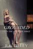R.K. Lilley - Grounded artwork