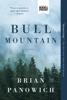 Brian Panowich - Bull Mountain artwork
