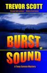 Burst Of Sound