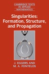 Singularities Formation Structure And Propagation