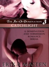 The Art Of Domination 3 Catchlight A Domination And Submission Romance Serial