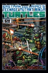 Teenage Mutant Ninja Turtles Color Classics 5