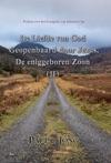 Preken Over Het Evangelie Van Johannes II - De Liefde Van God Geopenbaard Door Jezus De Eniggeboren Zoon  II