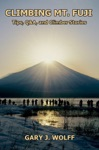 Climbing Mt Fuji Tips QA And Climber Stories