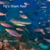 Fijis Shark Reef