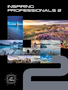 Inspiring Professionals 2 Book Cover