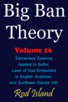 Big Ban Theory Elementary Essence Applied To Sulfur Laws Of God Embedded In English Grammar And Sunflower Diaries 13th Volume 16