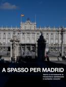 A Spasso per Madrid